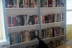 Adult-books